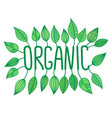 green-organic-sign-in-with-growing-leaves-vector-20556312(1)